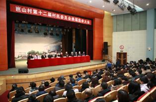 岜山村第十二届村委会和万杰社区第四届居委会 换届选举大会顺利举行
